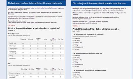 Spørreundersøkelsene myntet på Internett-butikk, og Internett-Kunde